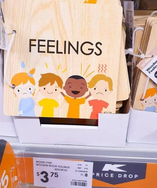 emotion cards for montessori from kmart AU
