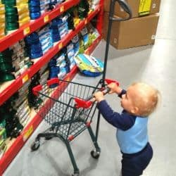practical life skills shopping with a 12 month old.