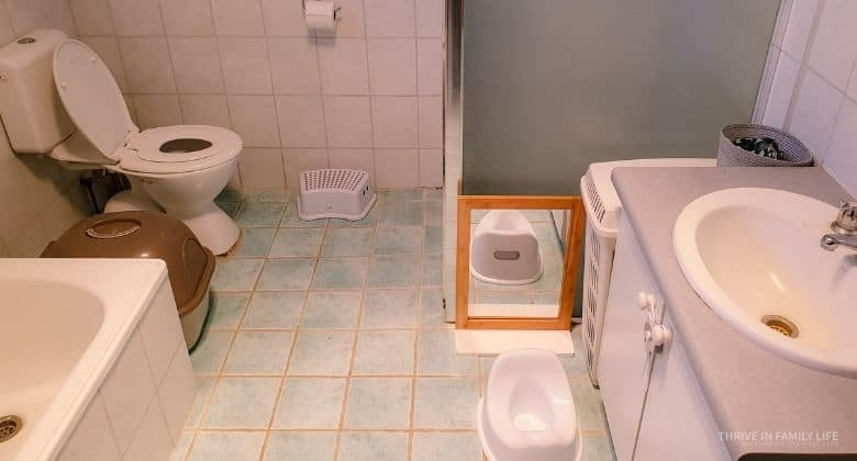 Toilet learning set-up in a bathroom with toilet in top left corner, shower in right corner, sink in bottom right, and bath on bottom left. Aqua tiles and white ceramic. Kids toilet seat on toilet. Kids plastic potty on floor in front of sink with small mirror in front of it.