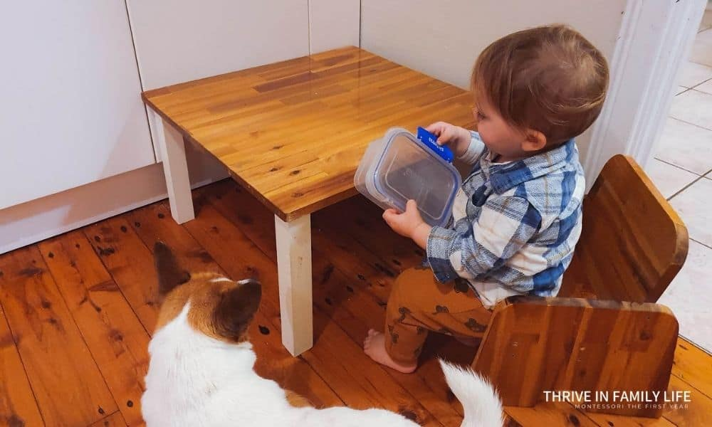 Montessori weaning table with a 1 yr old sitting at it in kitchen holding tupperware