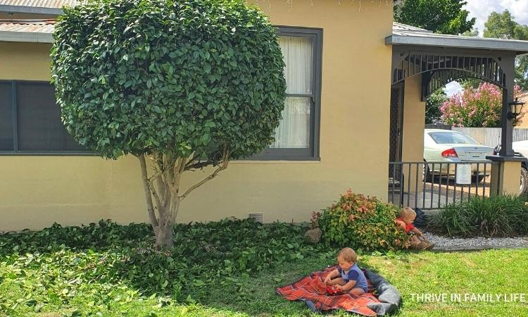 Montessori baby on picnic blanket outside in front yard while gardening under a medium sized tree with Montessori 3 year old in the bushes.