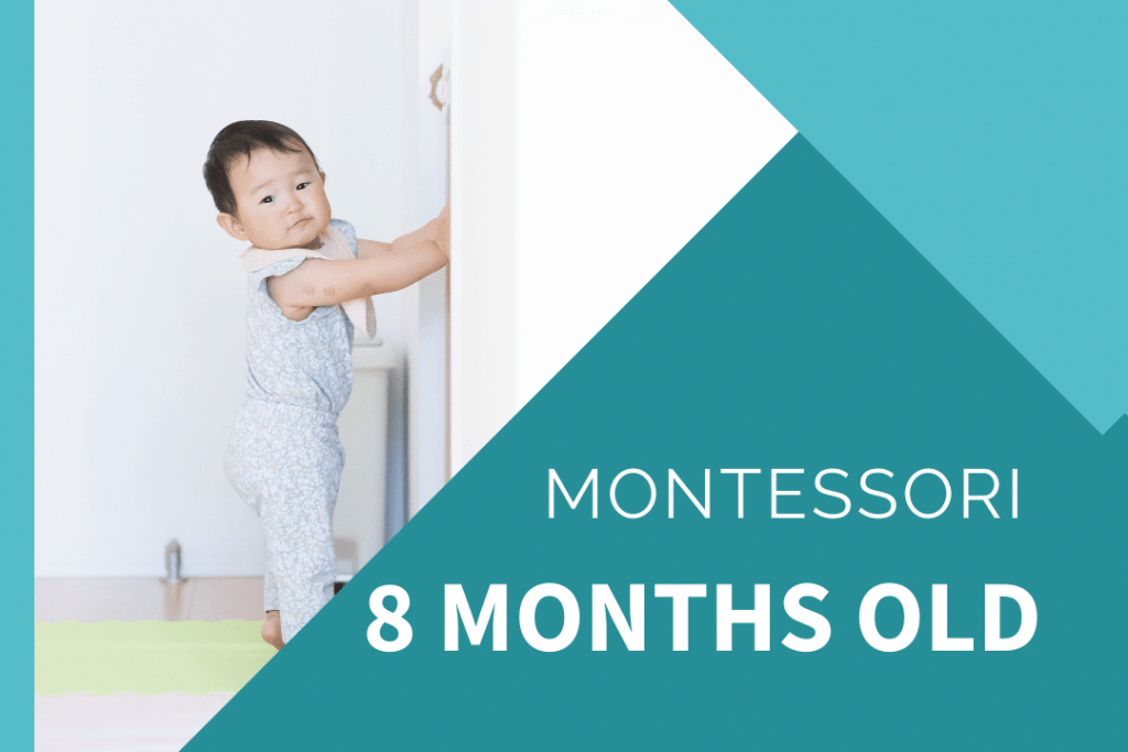 Montessori 8 month old